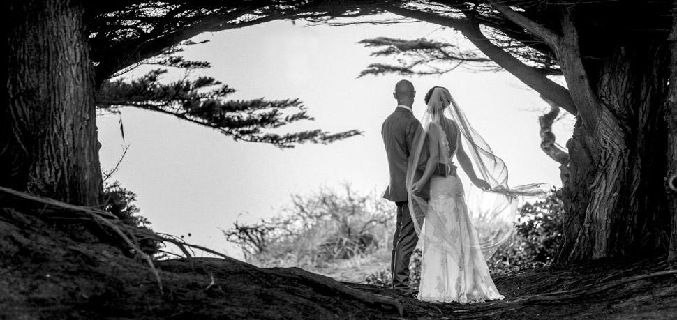 Kapiti Coast Wedding photographer